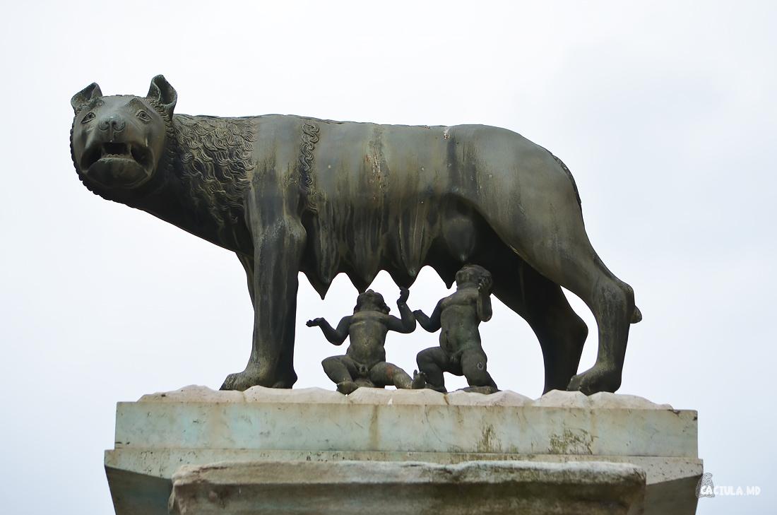 10Coliseum_Roma_caciula
