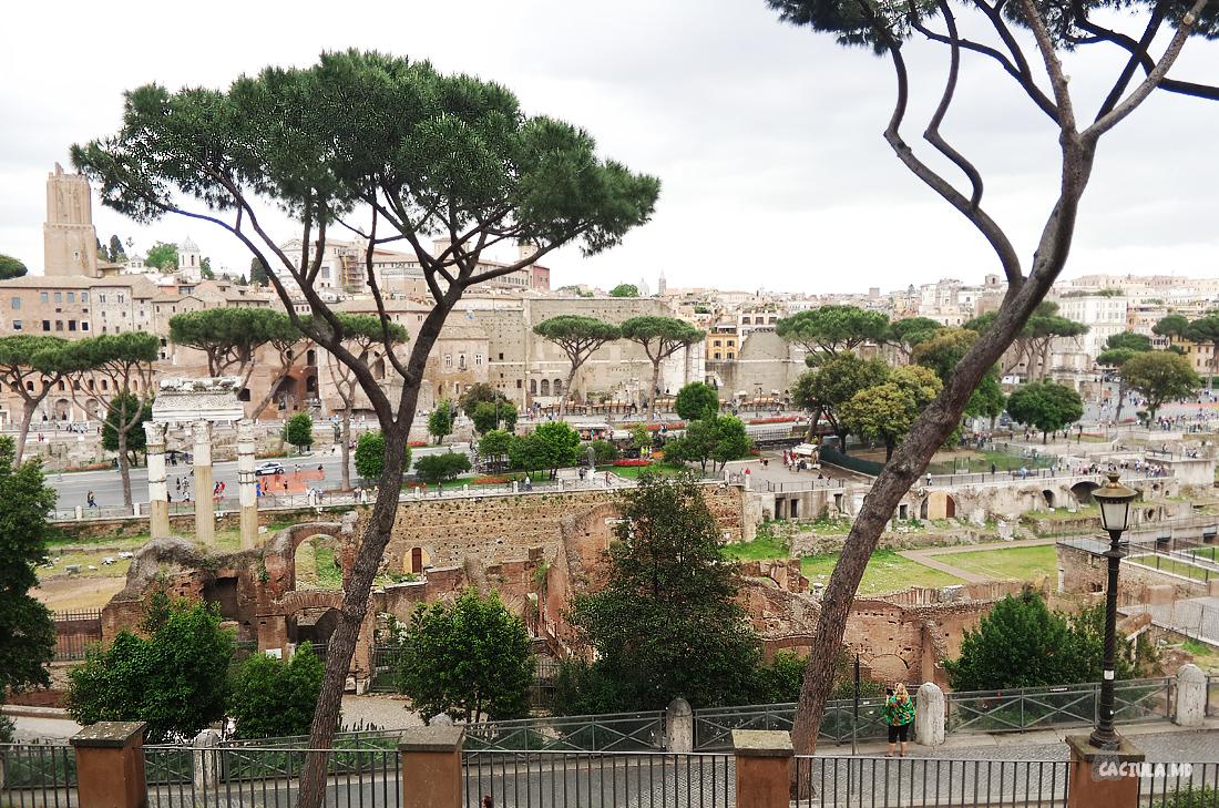12Forum_Roma_caciula