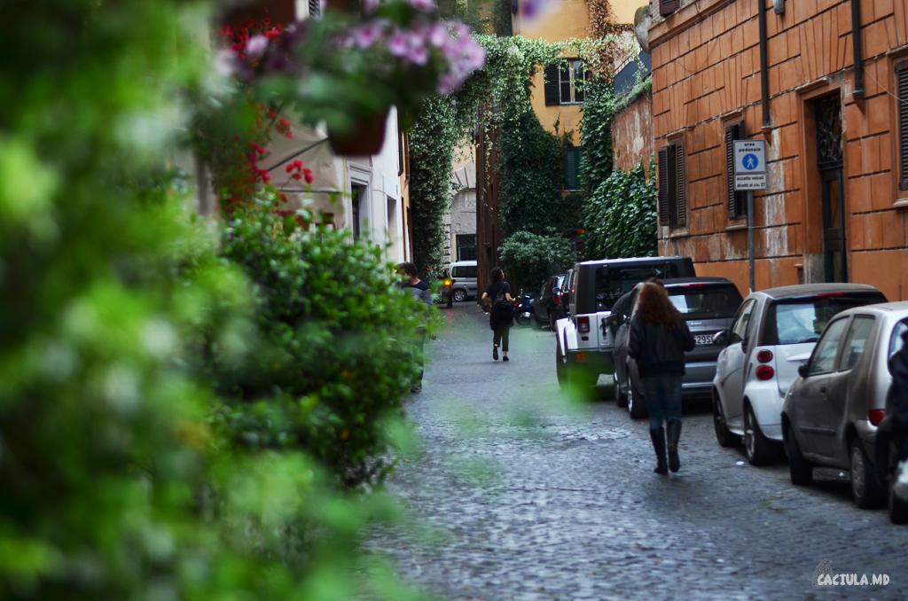 1_Trastevere_Roma_Caciula_md