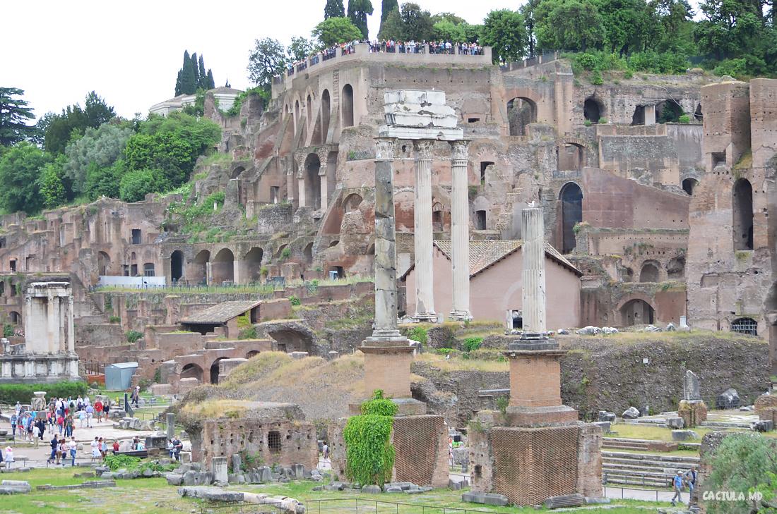3Forum_Roma_caciula