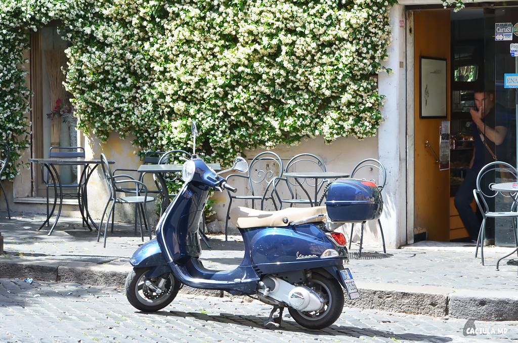 6Trastevere_Roma__caciula_md