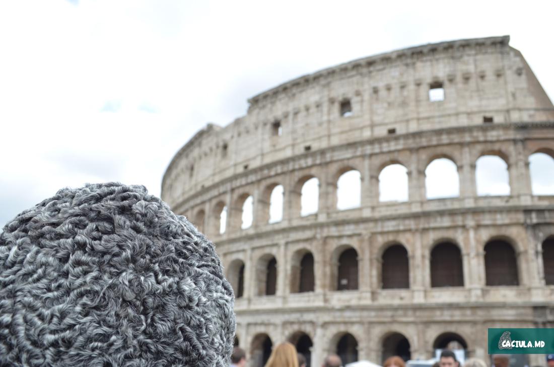 Coliseum_Roma_caciula