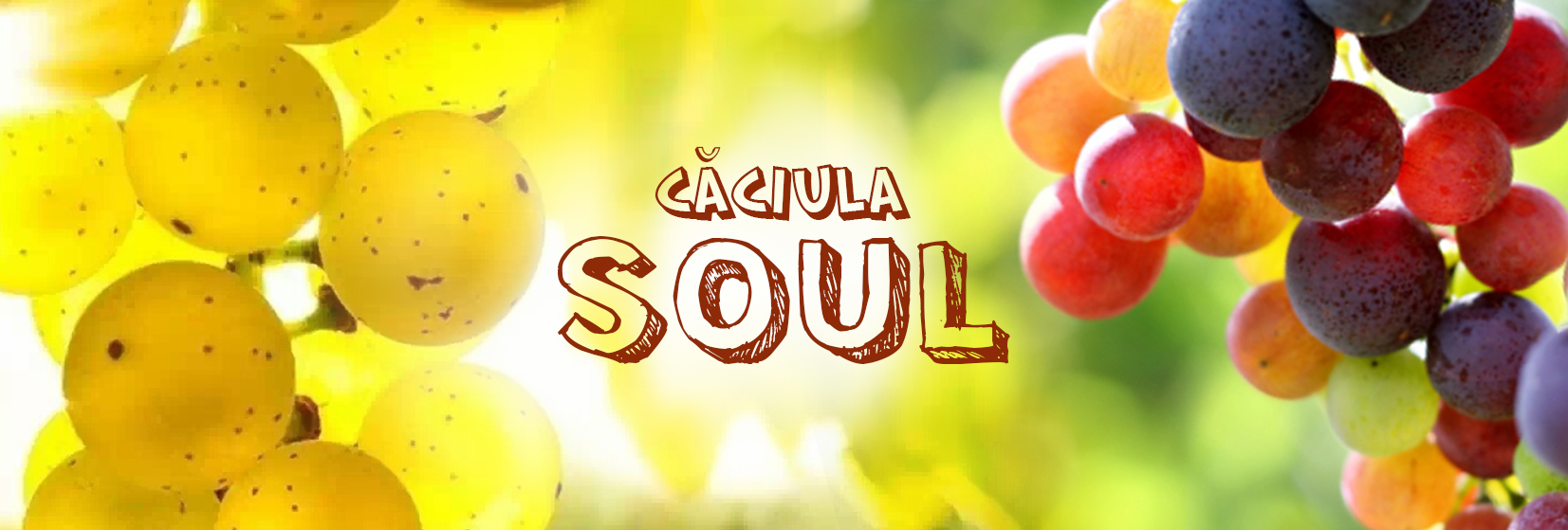 MAIN_caciula_SOUL