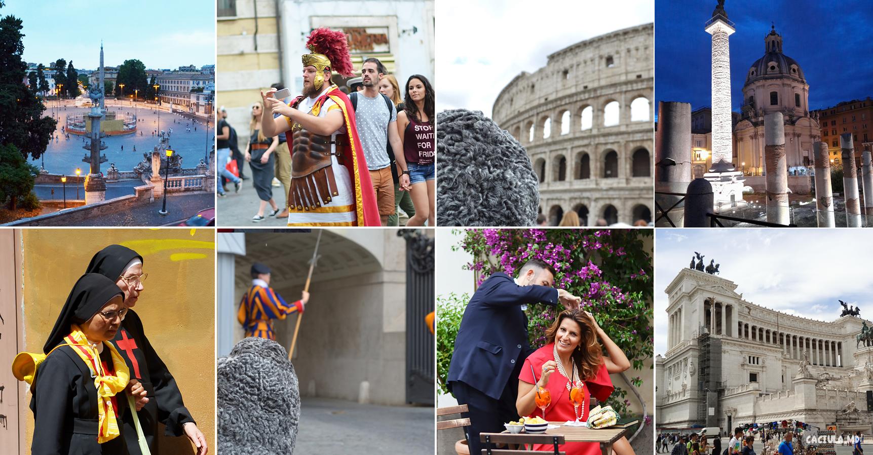 collage__roma_caciula_md