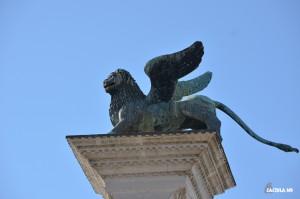 lion_venice_caciula_md