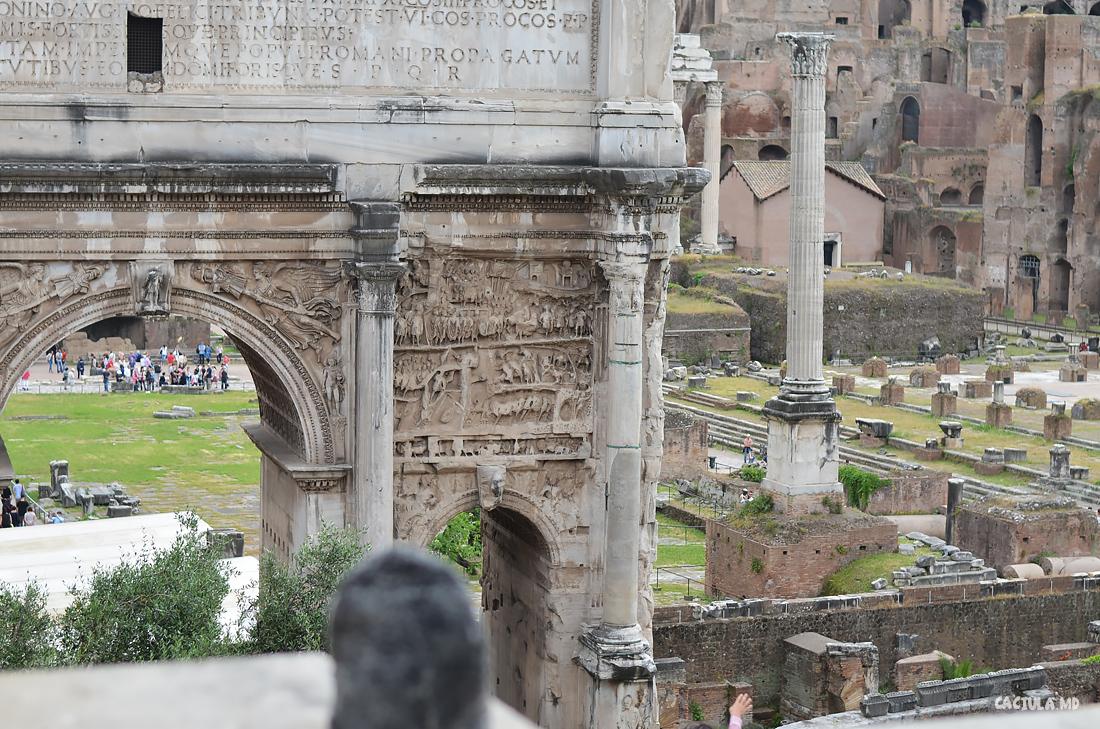 main_Forum_Roma_caciula