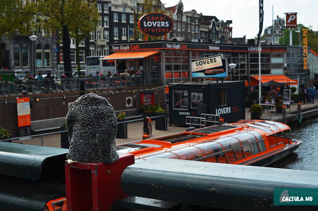 Caciula возле каналов в Амстердаме