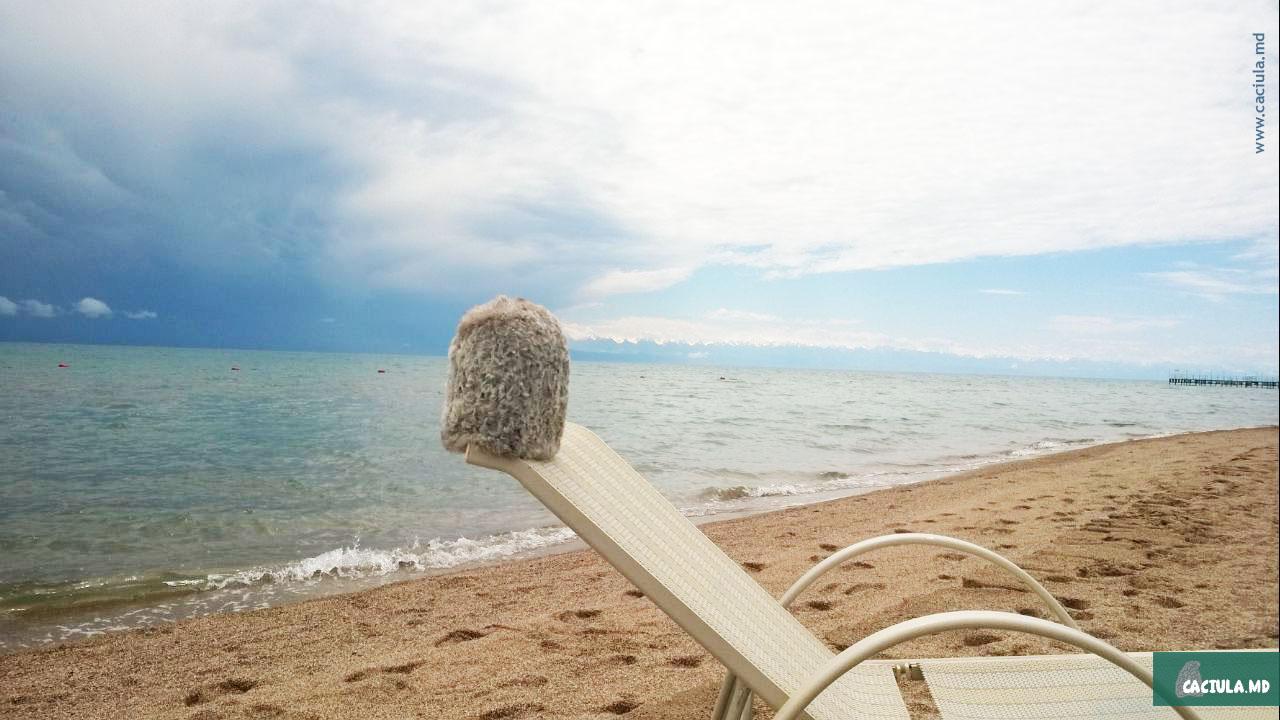 Caciula на лежаке возле озера Иссык-Куль в Киргизии