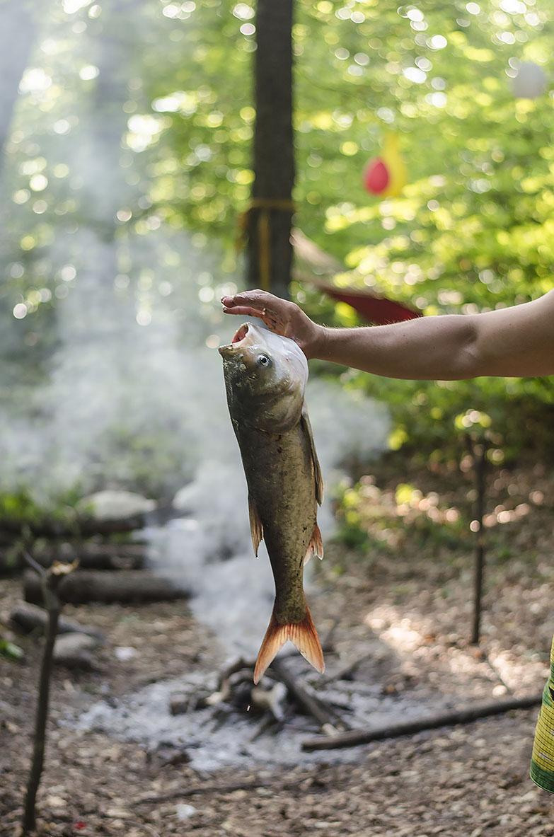 свежая рыба молдовы