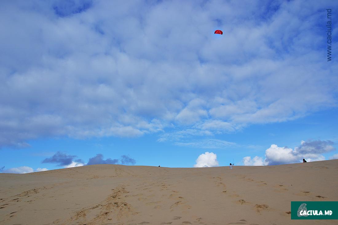 летающий змей в дюнах Аркашона