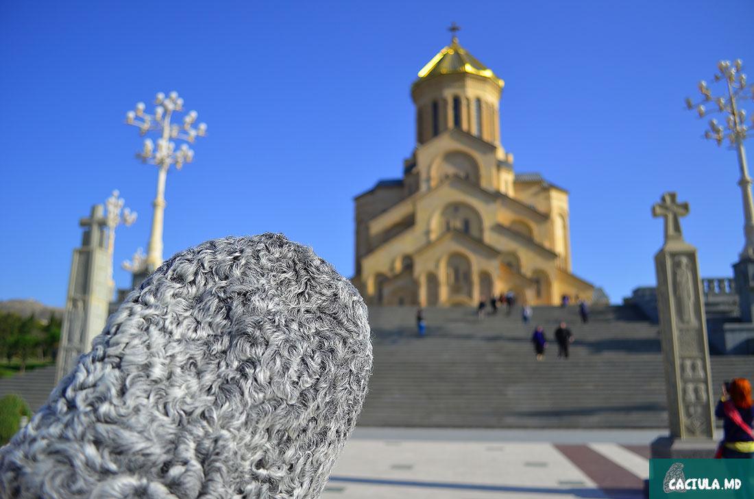 Тбилисский Собор Святой Троицы и скандал армянской диаспоры