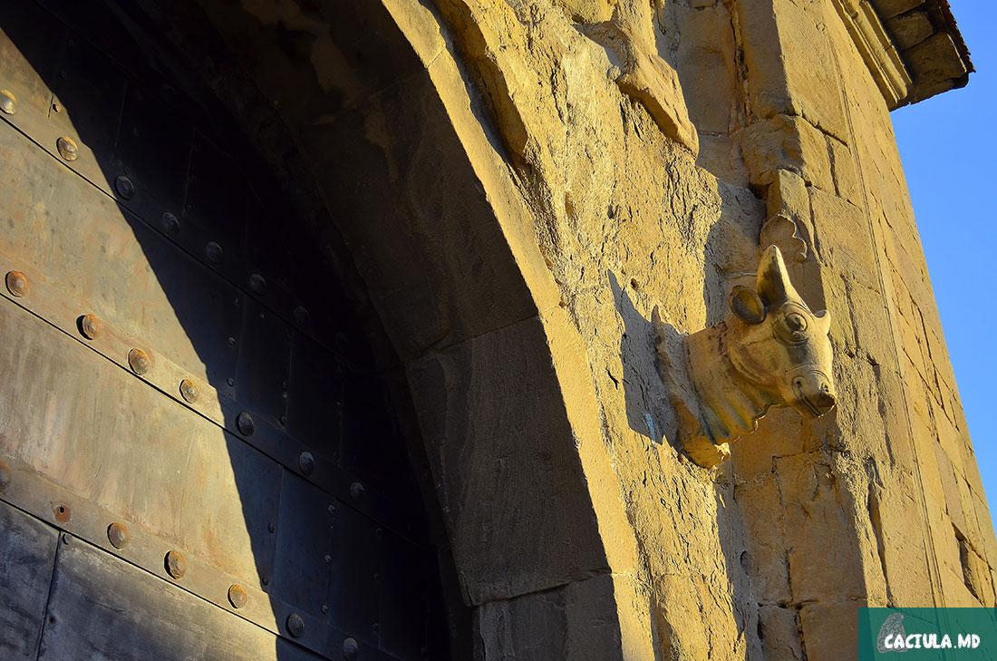голова буйвола в Мцхете