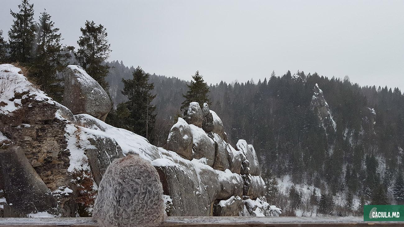 карпаты