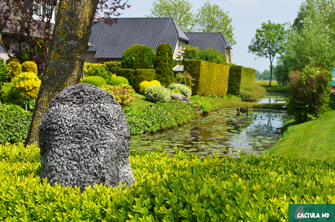 caciula, Holland, Гитхорн, Giethoorn, деревня в Нидерландах